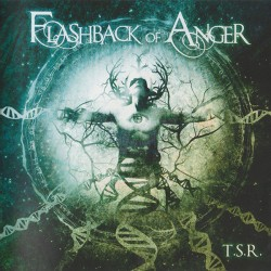 Flashback Of Anger ‎–...